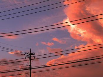 2007晩夏1.jpeg