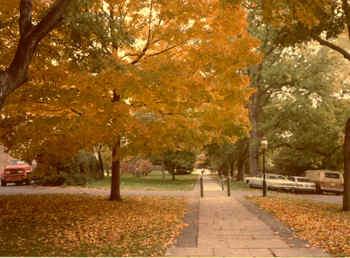 PrincetonFall.jpg